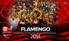 FLAMENGO CONQUISTA TÍTULO DA COPA INTERCONTINENTAL 2014!!